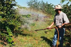 Crianças estão entre as principais vítimas dos efeitos nocivos dos agrotóxicos