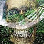 Estudo aponta subnotificação de mortes por agrotóxicos