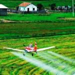 Agenda da Agricultura com Monsanto sugere aprovação do 'Pacote do Veneno'