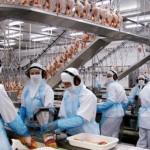 JBS é acusada de falsificar assinatura de trabalhador para não pagar direitos